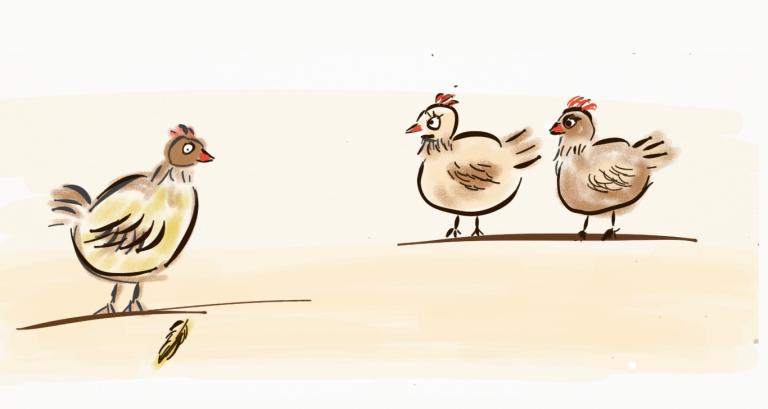 Lehrstück für transparente Kommunikation: Wie aus einer Feder fünf tote Hühner wurden